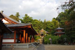 平等寺IMGP9018.JPG