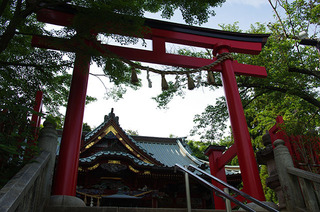 高尾山IMGP5456.JPG